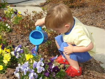 Blog. small boy watering flowers .9.09