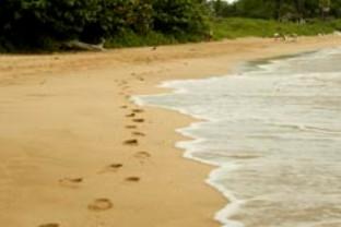 Blog. Sandy beach. 1.10.   f_sand_01