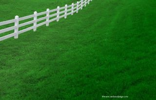 Blog. grass with white fence. 5.10