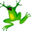 Blog. frog2. 10.09