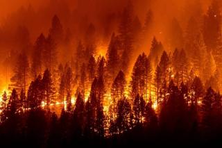 Blog. Dixie fire 2.   8.15.2021